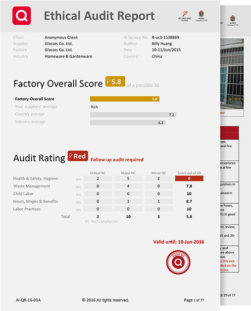 audit report sample