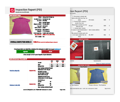 Inspection & Audit Sample Reports