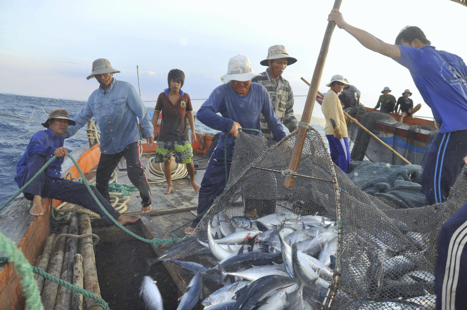 Modern Day Slavery in Fishing Industry
